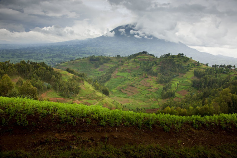 Rwanda-Landscape_R1_5917_2_-3 (1)